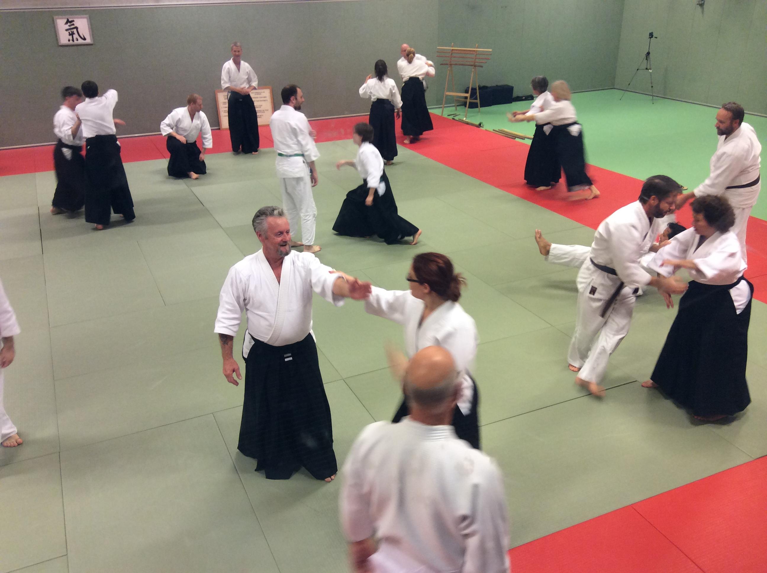 Ki-Aikido-seminar-oktober-2017-amsterdam