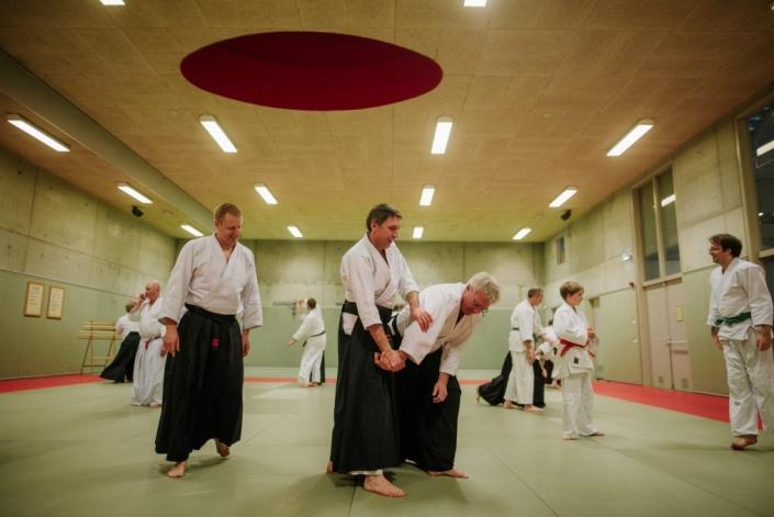 Ki-Aikido Development Federation Netherlands